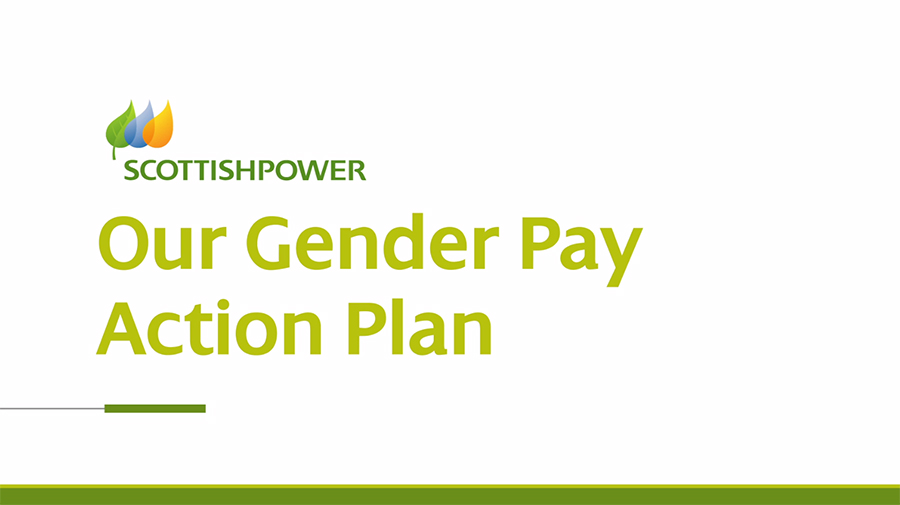 Gender Pay Gap - Action Plan Animation Text